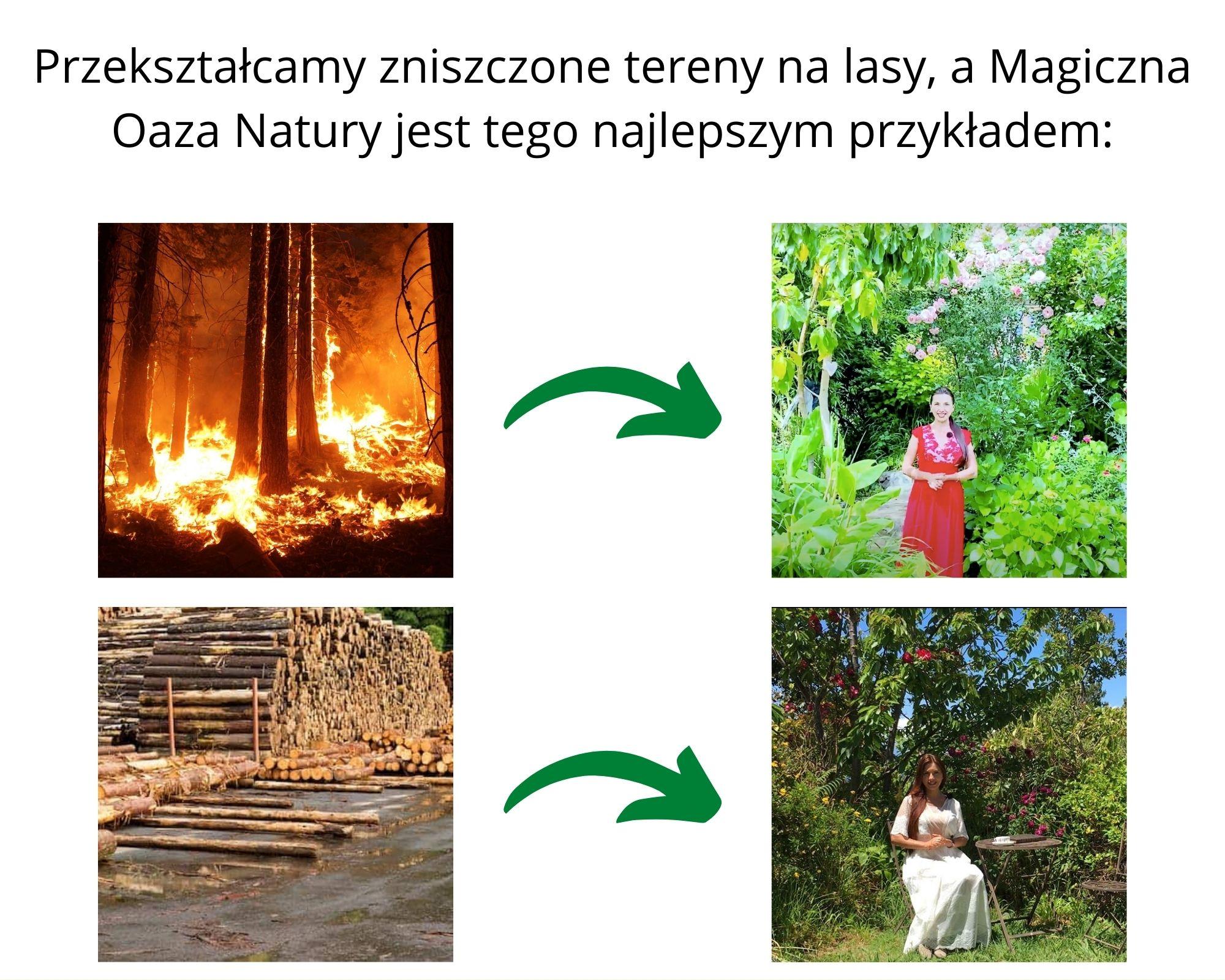 Maria Bucardi, Magiczna Oaza Natury, pomoc ziemi, ekologia, onoSemina.org,